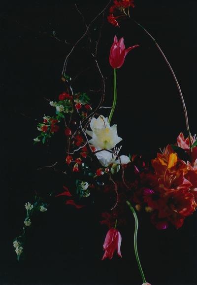 Fleur Ikuko KARASUNO 1